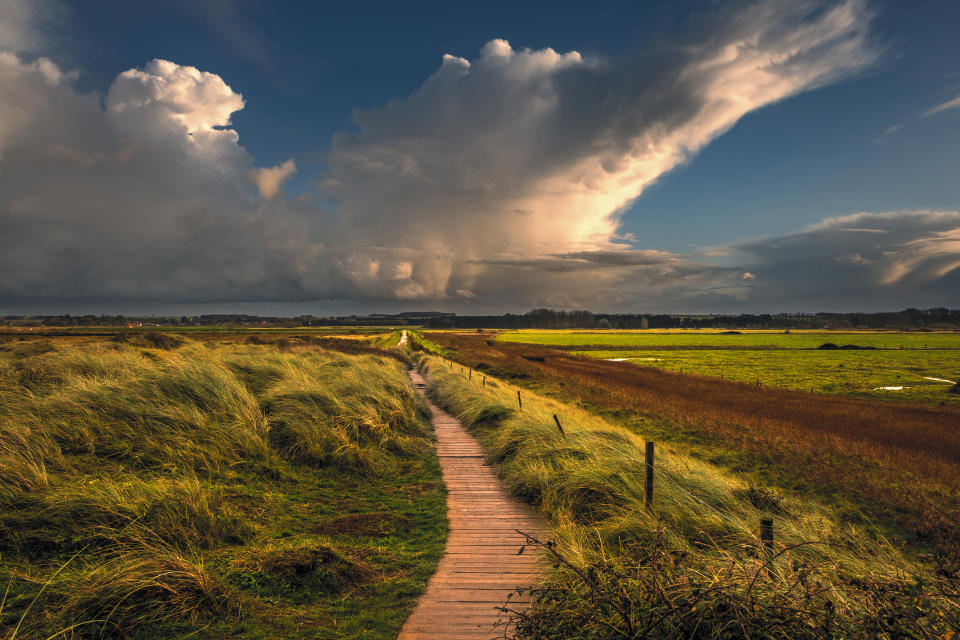 View along a sea bank path on the Norfolk coast. (Photo by: Bill Allsopp/Loop Images/Universal Images Group via Getty Images)