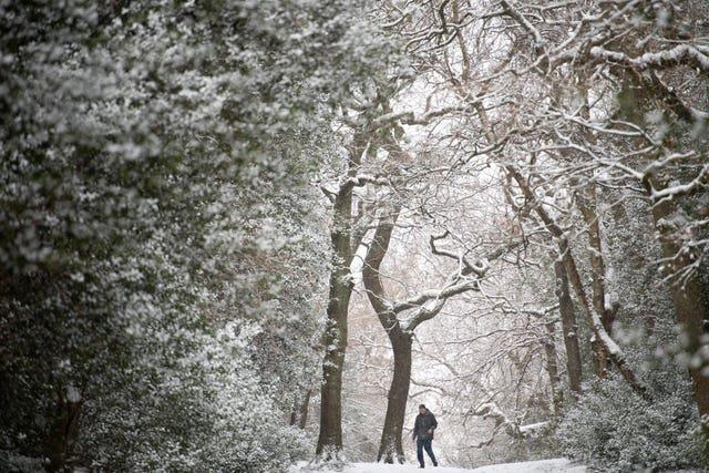 Snow falls as people walk in Sutton Park in Birmingham