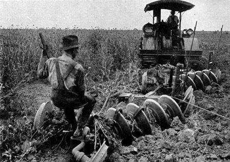 Riots, Rage, and Resistance: A Brief History of How Antibiotics Arrived on the Farm