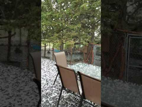 """<p>A heavy hailstorm passed through Prineville, in Oregon's Crook County, on Tuesday, June 27.</p><p>This video was shot by Linda Forney, who keeps birds and pets at her Gramma Roses Keeper of Peepers business. Forney told Storyful that the hail was big enough to hurt those caught under it. """"The animals tried desperately to get out of the onslaught of huge hail balls of ice,"""" she said. """"I was in it and geez, it did hurt to get hit by one."""" Credit: YouTube/Linda Forney via Storyful</p>"""
