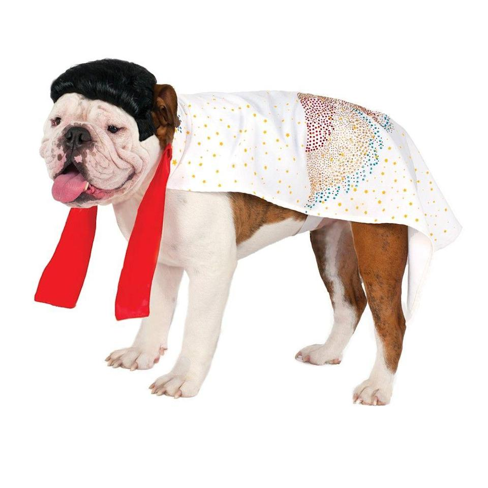 """<p>There better be a bacon and peanut butter reward for this.</p><br><br><strong>Costume Kingdom</strong> Elvis Cape Pet Halloween Costume, $21.95, available at <a href=""""https://costumekingdom.com/p-27600-elvis-cape-dog-pet-halloween-costume.aspx"""" rel=""""nofollow noopener"""" target=""""_blank"""" data-ylk=""""slk:Costume Kingdom"""" class=""""link rapid-noclick-resp"""">Costume Kingdom</a>"""