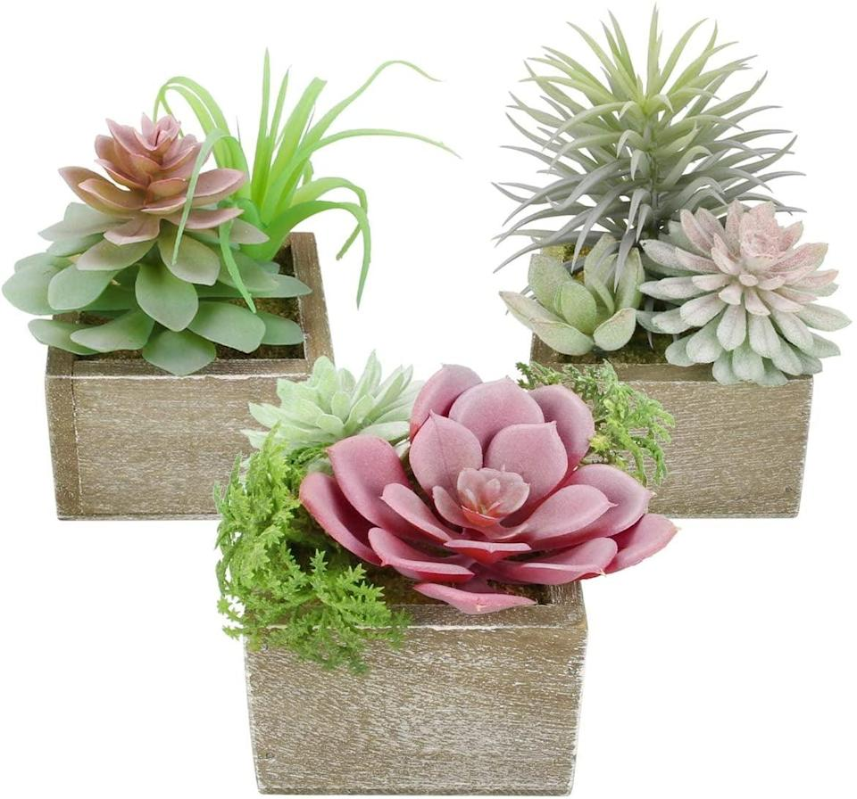 <p>If you love hues of pink, the <span>Mingfuxin Artificial Succulents Plants Set of 3</span> ($24) is a great choice!</p>
