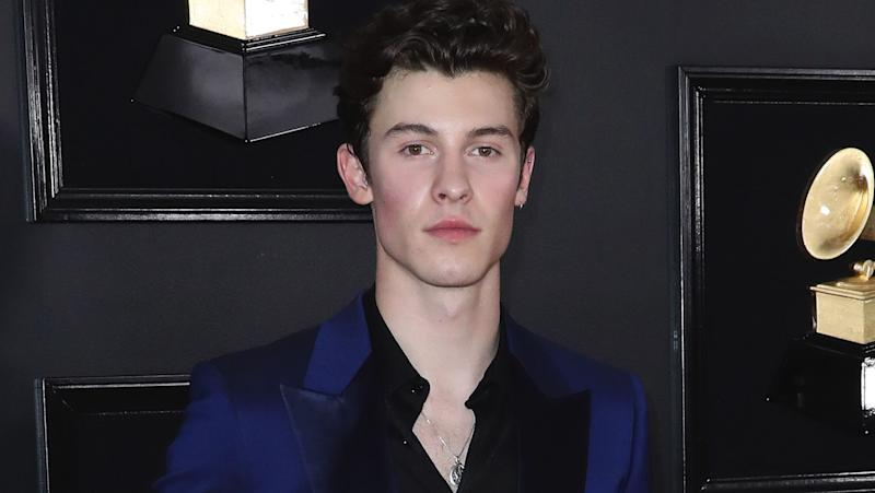 Shawn Mendes and Camila Cabello's Makeout Session Is Too Hot to Handle