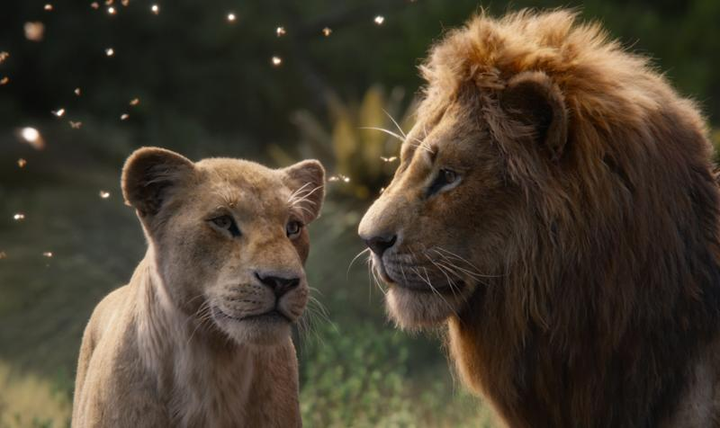 Jon Favreau's take on 'The Lion King' was produced via photorealistic animation, rather than live-action elements. (Credit: Disney)