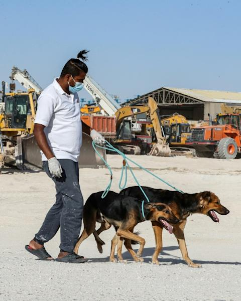 Paws depends on donations and a mostly volunteer workforce, as well as revenue from its kennelling service (AFP Photo/KARIM JAAFAR)