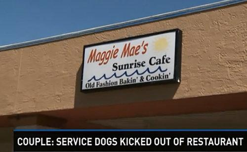 maggie-maes-service-dogs.jpg
