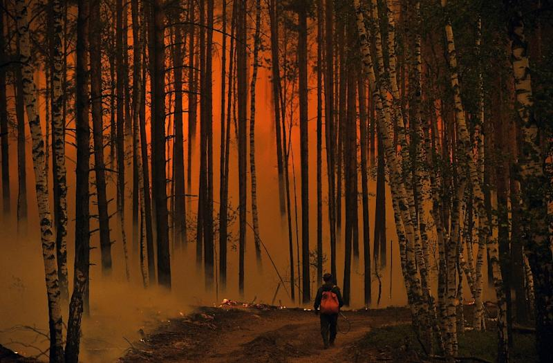 Russia's cash-strapped forest service struggles to cover vast expanses where wildfires occur (AFP Photo/NATALIA KOLESNIKOVA)