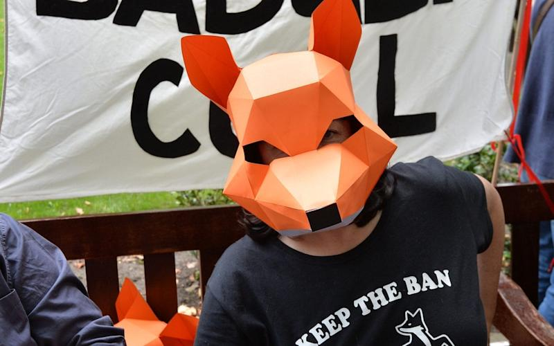 The badger cull has provoked an angry backlash from animal rights campaigners - PA