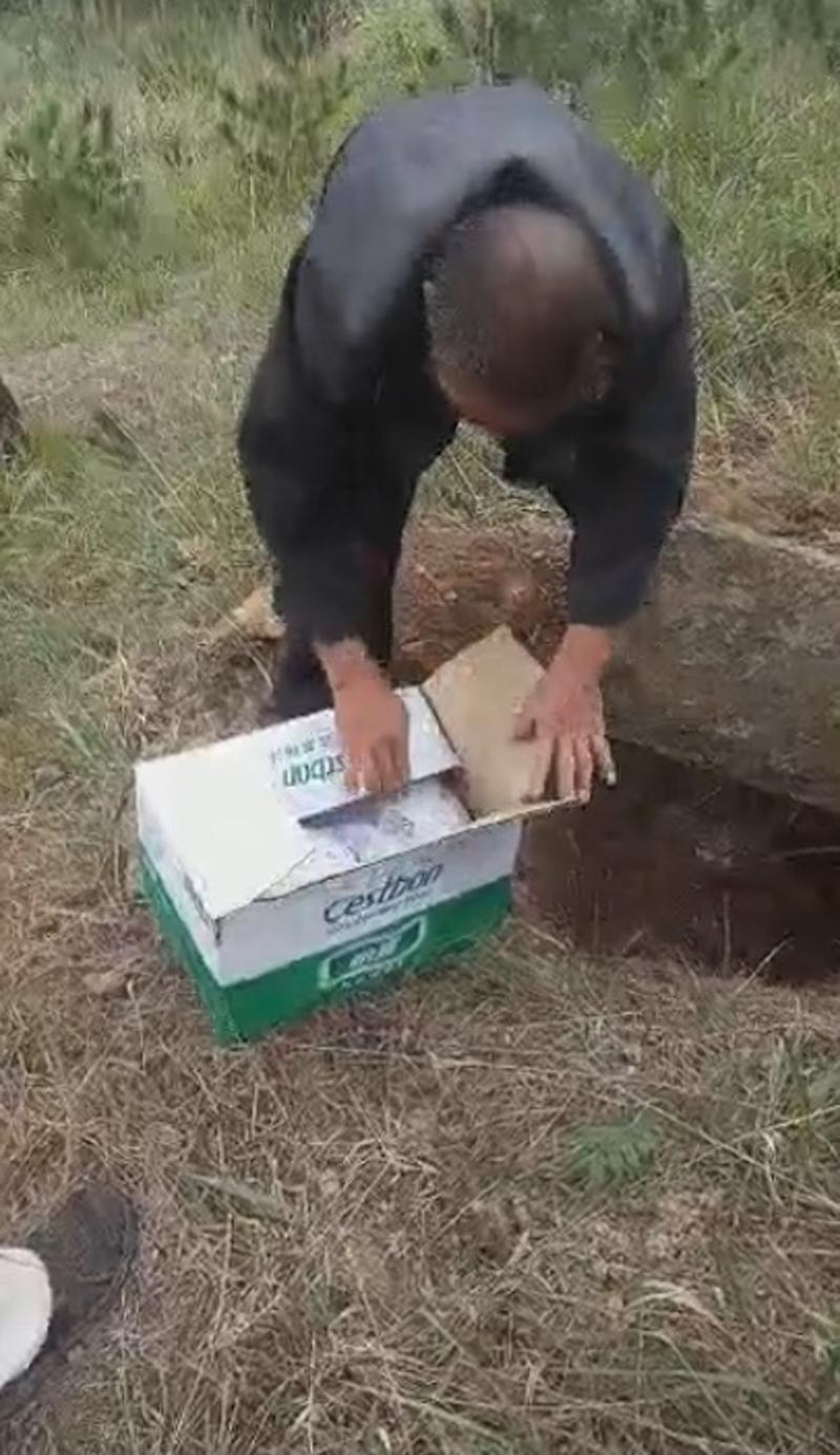 Pictured is a man opening the cardboard box in which the boy was buried.