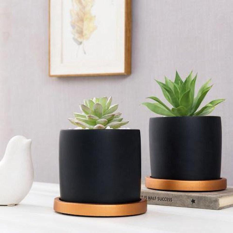 <p>Give their succulent collection a chic home in these <span>MyGiftUS Cement Planter Pots (Set of 2)</span> ($24).</p>