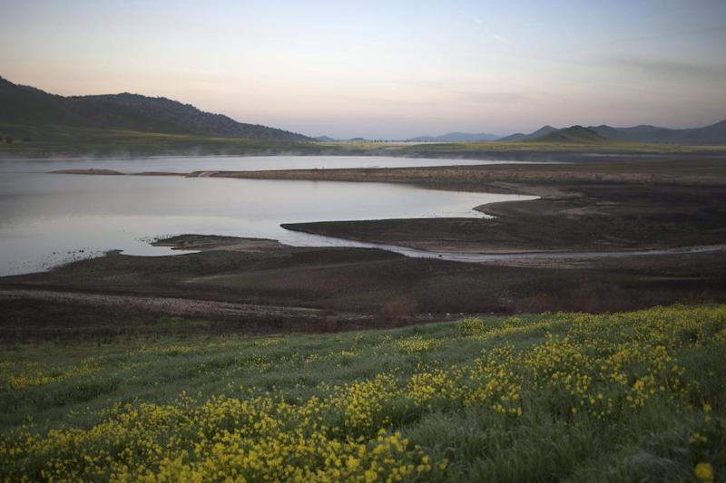 Water levels in Lake Success remain desperately low as the drought worsens on February 11, 2015 near East Porterville, California (AFP Photo/David Mcnew)