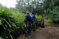 Researchers look for frogs at a pond in Cooranbong