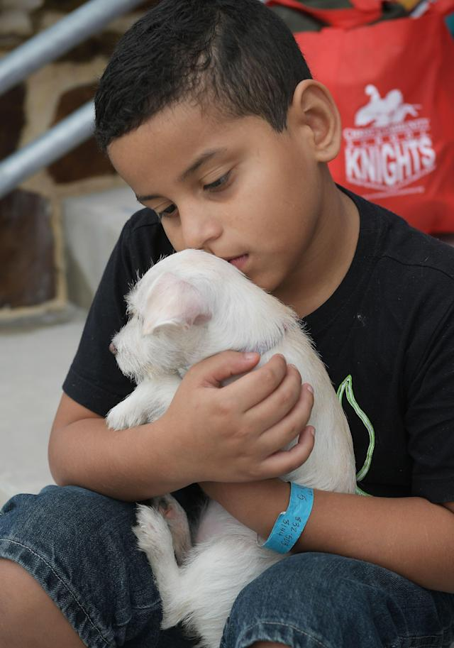 <p>Joshua Lopez, 9, holds puppy Cali outside of College Park High School which was set up as a temporary shelter for Hurricane Harvey evacuaees in The Woodlands, Texas on August 30, 2017. (Photo: Mandel Ngan/AFP/Getty Images) </p>