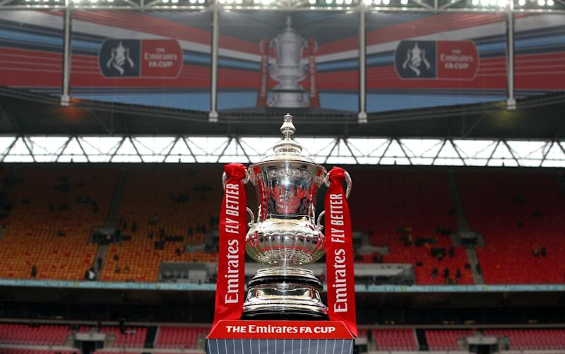 The Emirates FA Cup trophy - PA