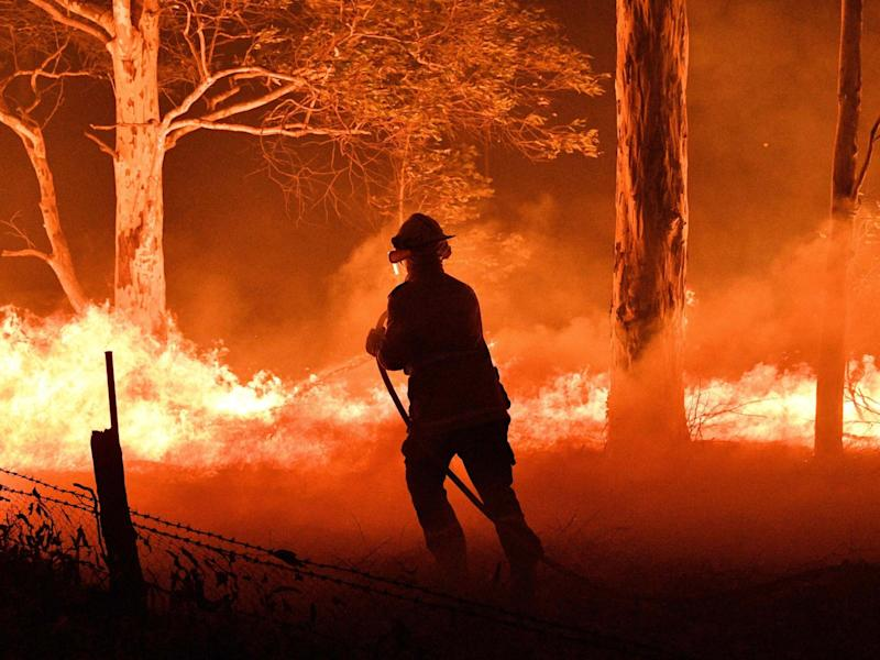 A firefighter hosing down trees and flying embers to try to save nearby houses from bushfires in New South Wales: AFP via Getty Images