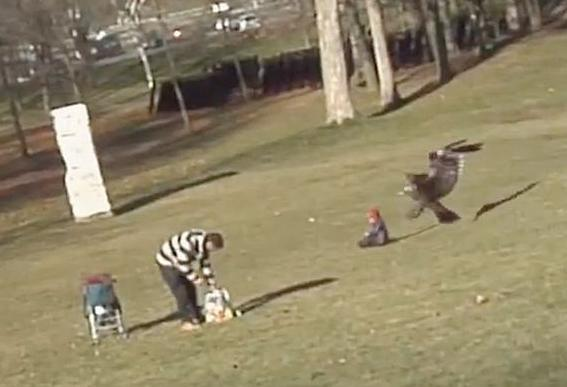 """<div class=""""caption-credit""""> Photo by: Youtube.com</div><div class=""""caption-title""""></div><b>The Other Flying Baby</b>: The eagle has landed and it carried off a little baby who was just minding his own business. The <a target=""""_blank"""" href=""""http://abcn.ws/T1gQ16"""">""""Eagle Snatching Baby"""" video</a>, was the internet's final viral baby gift in 2012. The fact that it was all a hoax, created by Canadian animation school students, didn't make it any less click-worthy. <br>"""