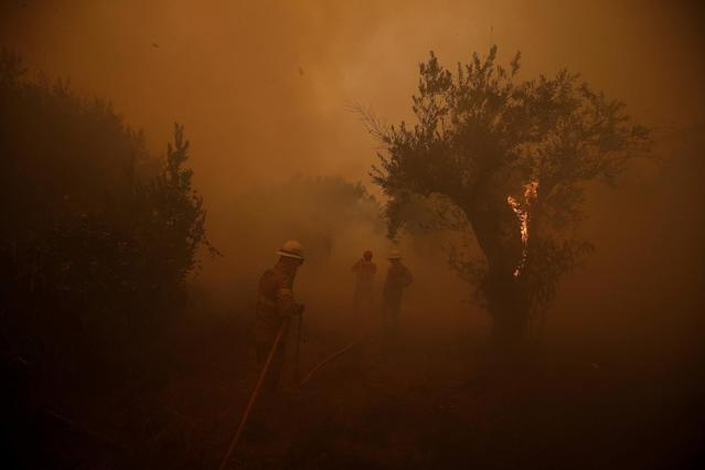 <p>Firefighters work to put out a forest fire in the village of Carvoeiro, near Castelo Branco, Portugal, July 25, 2017. (Rafael Marchante/Reuters) </p>