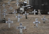 A dog sits next to numbered crosses at the Iraja cemetery, where many COVID-19 victims are buried in Rio de Janeiro, Brazil, Friday, Feb. 5, 2021. (AP Photo/Silvia Izquierdo)
