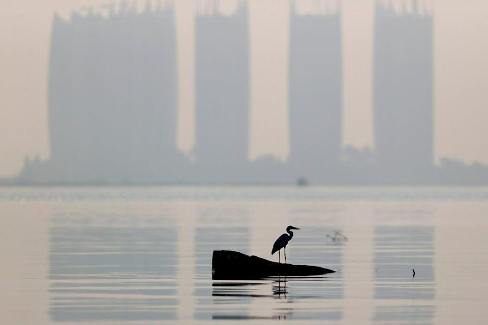 File: A heron bird perches as smog covers high-rise buildings on the northern coast of Jakarta, Indonesia (Reuters)