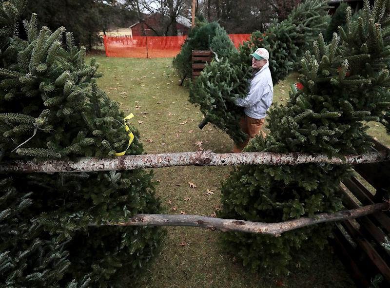 Jim Dohner, owner of Christmas Treeland in Baraboo, Wisconsin, carries a Fraser fir toward a display stand on Nov. 21. (Photo: ASSOCIATED PRESS)