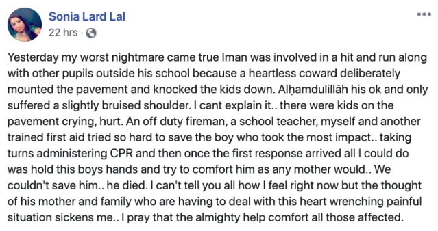Sonia Lard described the moments after the crash (Facebook)