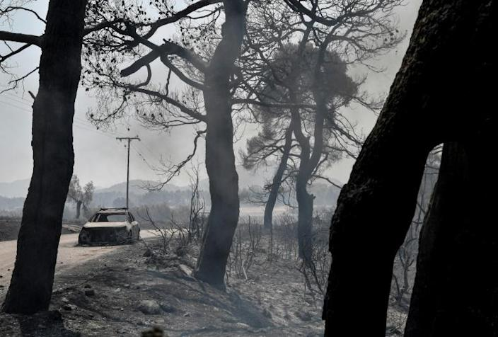 Local officials spoke of 'total destruction' of the forest with the fire still active (AFP Photo/Louisa GOULIAMAKI)