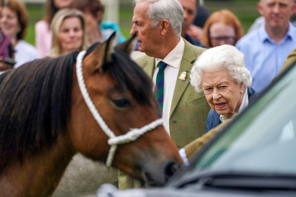 Queen Elizabeth II  at the Royal Windsor Horse Show (PA)