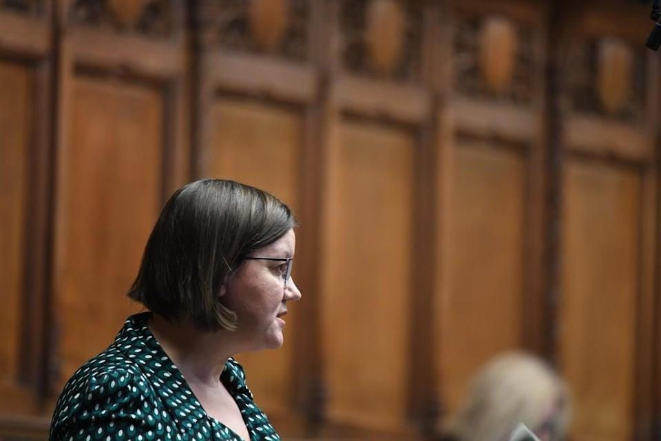 Public Accounts Committee chair Meg Hillier (UK Parliament/Jessica Taylor ) (PA Media)