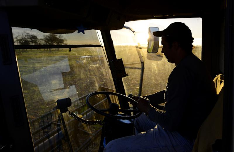 Argentina Soy Crushers Meet With China on Path to Meal Approval
