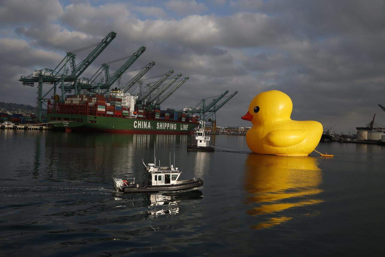 A giant inflatable rubber duck installation by Dutch artist Florentijn Hofman floats through the Port of Los Angeles as part of the Tall Ships Festival, in San Pedro, California August 20, 2014. The creation, which is five stories tall and five stories wide, has been seen floating in various cities around the world since 2007. REUTERS/Lucy Nicholson (UNITED STATES - Tags: SOCIETY MARITIME)