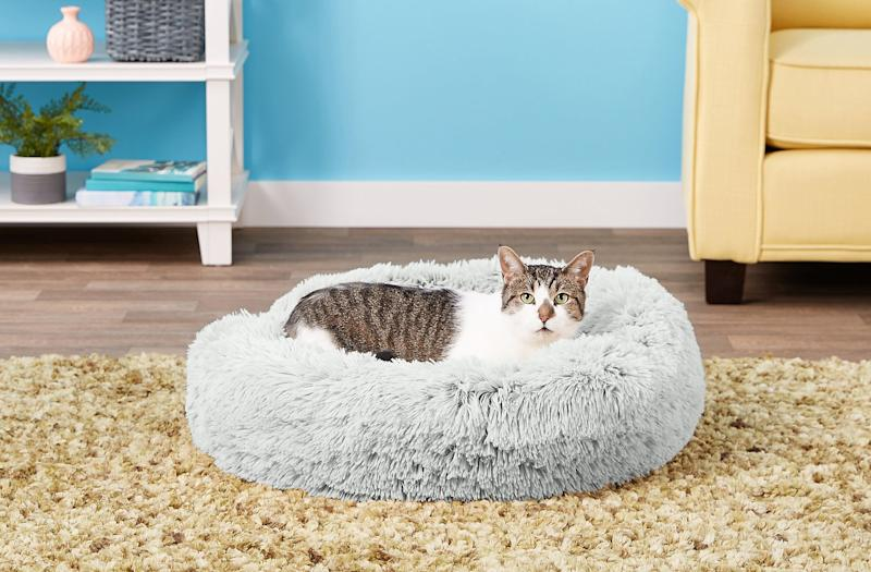Get Your Cat a Heated Bed