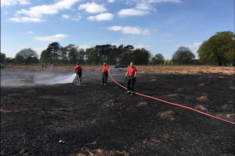 Scorched: an area the size of a football pitch was destroyed: London Fire Brigade