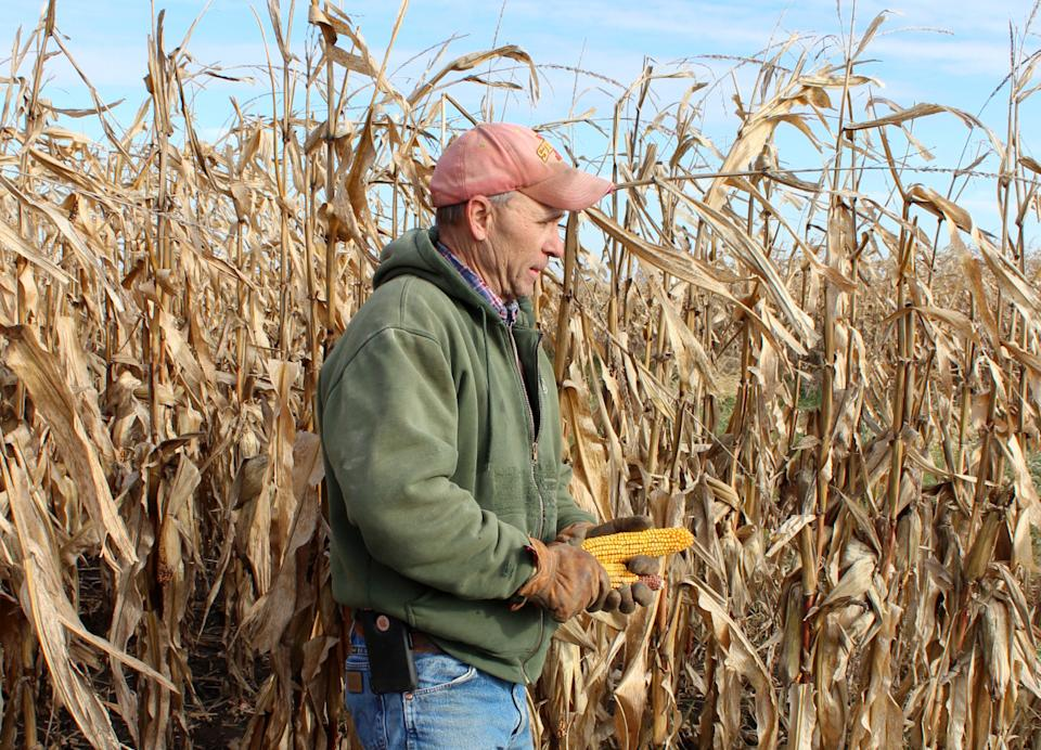 Corn and soybean farmer Don Swanson prepares to harvest his corn crop as he and other Iowa farmers struggle with the effects of weather and ongoing tariffs resulting from the trade war between the United States and China that continue to effect agricultural business in Eldon, Iowa U.S. October 4, 2019. Picture taken October 4, 2019. REUTERS/Kia Johnson