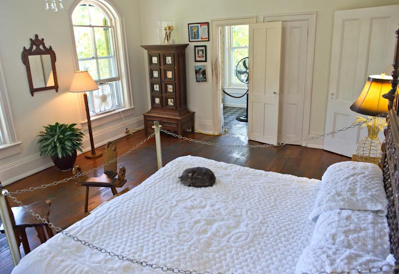 A cat sleeps on the bed at the home and museum of author Ernest Hemingway on Feb. 18, 2013 in Key West, Florida, where Hemingway lived and wrote for a decade. (KAREN BLEIER via Getty Images)