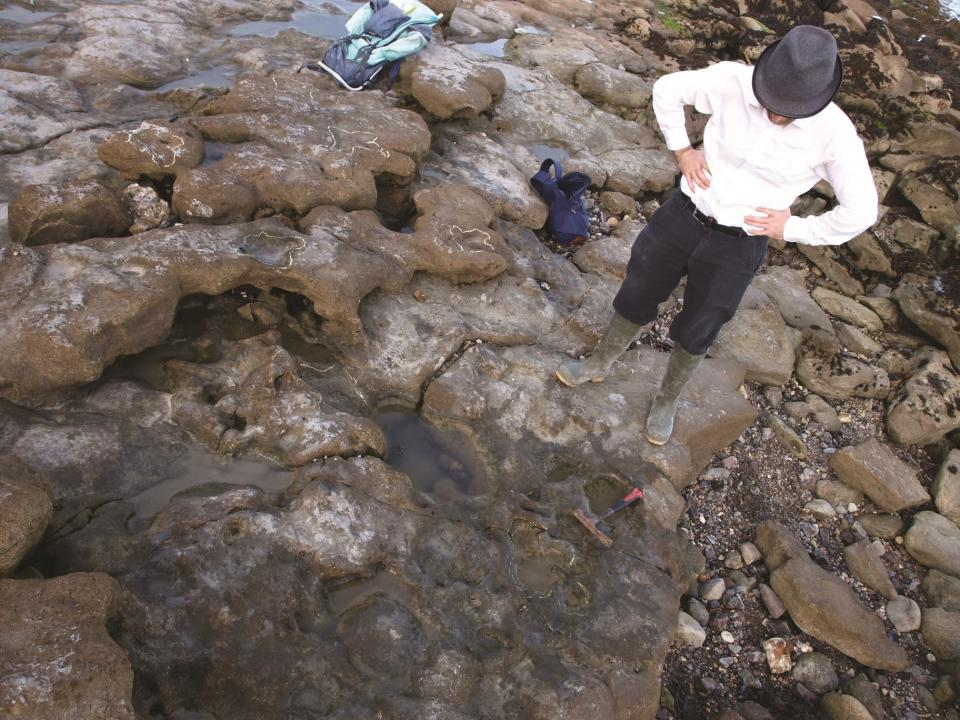 Phil Hadland and the trackway of dinosaur footprints (University of Portsmouth/PA)