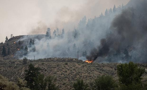 A wildfire burns on a hill near Osoyoos, B.C., on Wednesday. More personnel and equipment are en route to help fight the province's many wildfires.  (Maggie MacPherson/CBC - image credit)