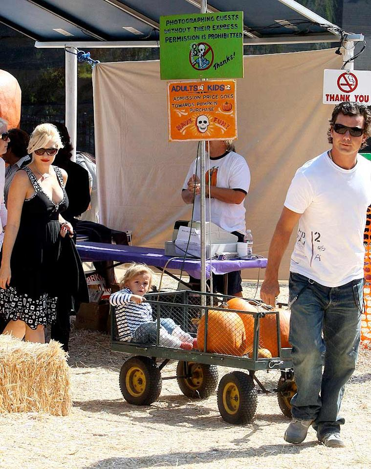 "Looks like Gwen Stefani and Gavin Rossdale are loading up on ghoulish gourds, much to son Kingston's delight. <a href=""http://www.x17online.com"" target=""new"">X17 Online</a> - October 12, 2008"
