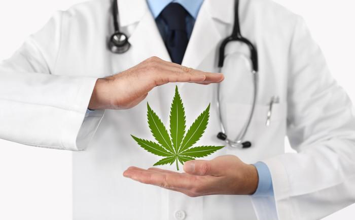 A doctor cradles his hands around an image of a marijuana leaf.