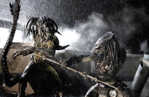 Alien Vs Predator: Who Would REALLY Win?