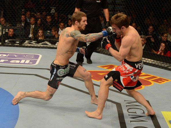 (L-R) Eddie Wineland versus Brad Pickett during their bantamweight fight at UFC 155 on December 29, 2012 at MGM Grand Garden Arena in Las Vegas, Nevada. (Photo by Josh Hedges/Zuffa LLC/Zuffa LLC via Getty Images)