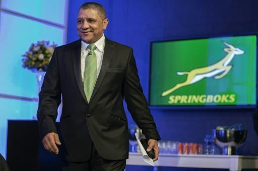 Allister Coetzee named as South Africa rugby coach