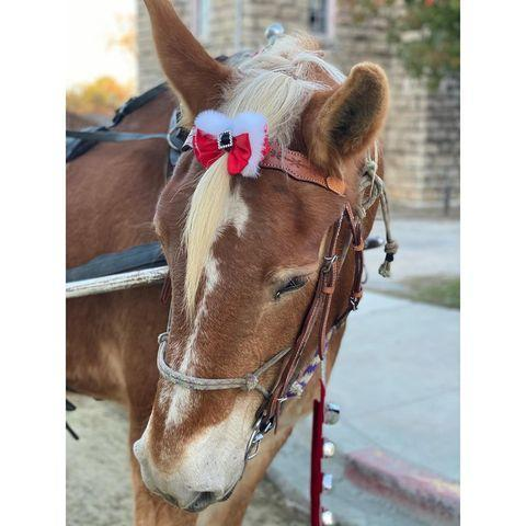 "<p>The new grandmother shared a photo of one of her horses at her Pennsylvania ranch on Instagram. In the snap, the horse wears a teeny tiny red, fur-lined bow. 'This Texas girl is too cute...,' the former model captioned the photo. </p><p><a href=""https://www.instagram.com/p/CIjZNg3nq5-/?utm_source=ig_web_copy_link"" rel=""nofollow noopener"" target=""_blank"" data-ylk=""slk:See the original post on Instagram"" class=""link rapid-noclick-resp"">See the original post on Instagram</a></p>"