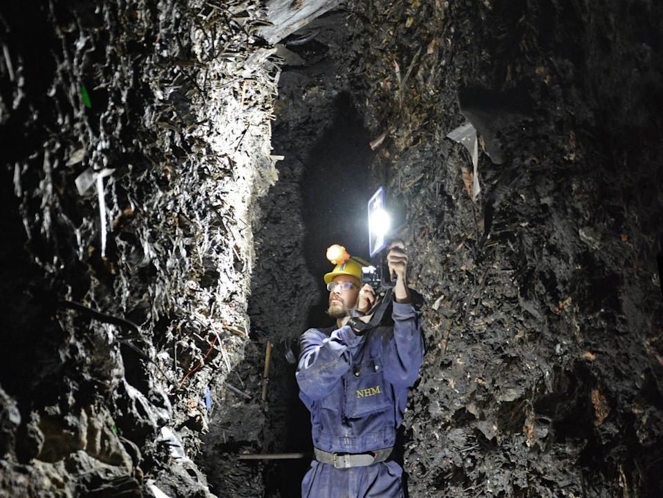 A man wearing a yellow helmet and blue jumpsuit holds up a light in a narrow rock passage in the Hallstatt mine.