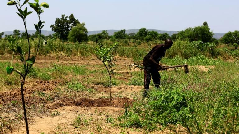 Land ownership was a main driver of the deadly conflict that broke out in Darfur in 2003 (AFP Photo/ASHRAF SHAZLY)