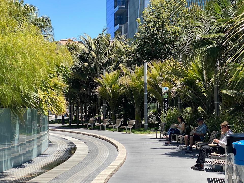 Office workers enjoy a sunny lunch amid tropical plants at Salesforce Park, an elevated green space in San Francisco. (Josh Marcus / The Independent)