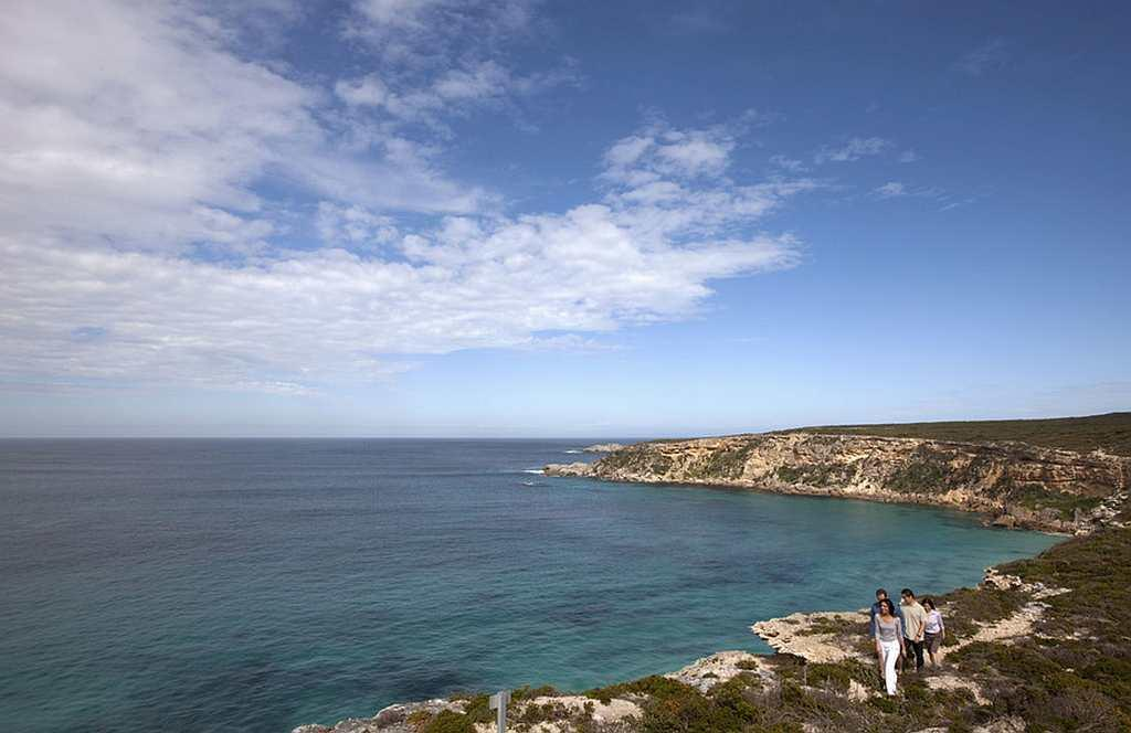 A 30-minute flight from Adelaide takes you to Kangaroo Island, where the island's friendly residents and namesakes come peering through your car window.