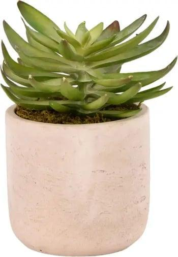 <p>Trade in your bouquet of bodega blooms for <span>Bloomr's Desert Echeveria Succulent Planter</span> ($59). They'll offer just as much visual intrigue - but will last <em>a lot</em> longer than a batch of flowers.</p>