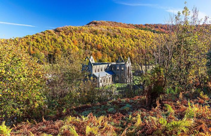 The Welsh town of Tintern's namesake Tintern Abbey in the fall