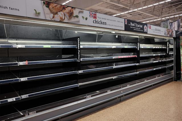 Families are buying chickens and backyard hens as supermarket stocks dwindle following a period of panic buying in the UK. (Getty Images)