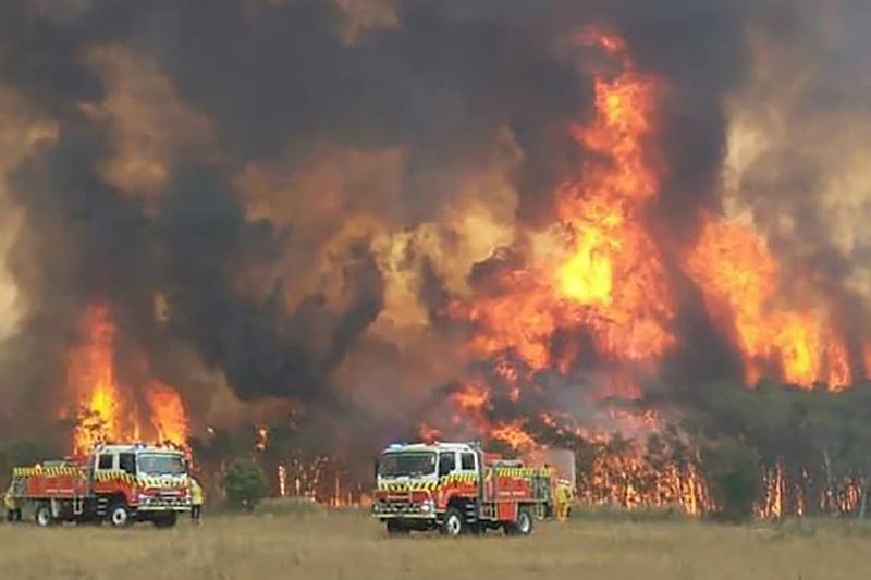 Australia's Apocalyptic Wildfires: Here's What You Need to Know